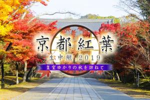 KBS京都紅葉生中継